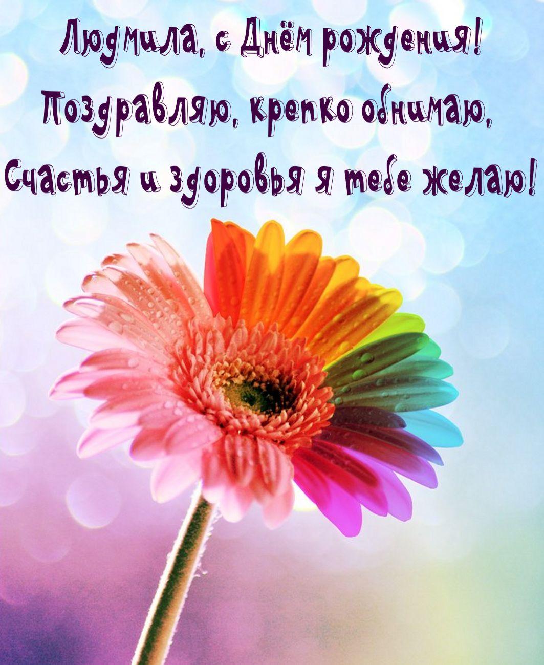 Яркий цветок и поздравление Людмиле