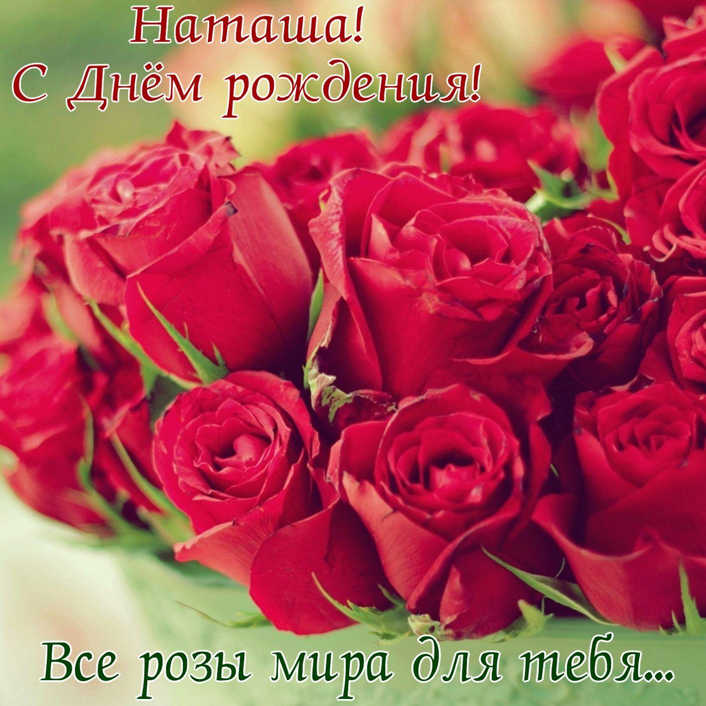 Все розы мира на День рождения Наташе