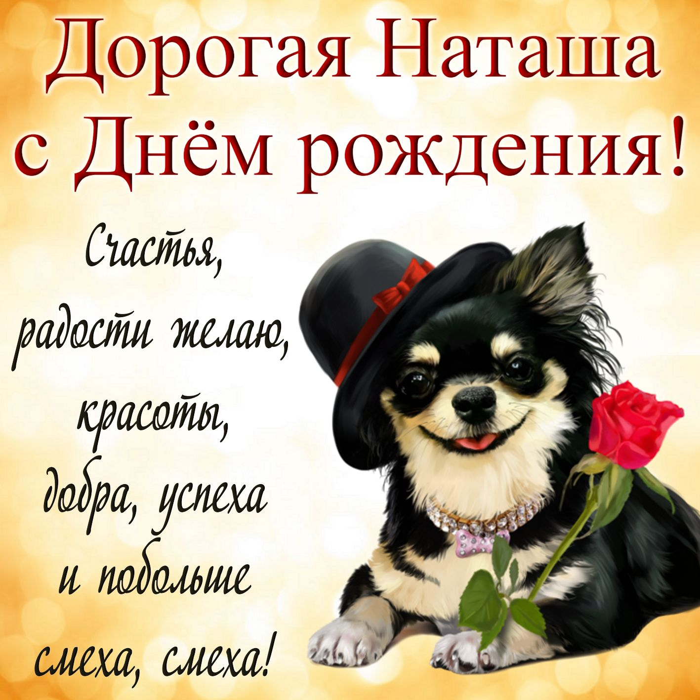 Открытка на День рождения Наталье - красивая собачка в шляпке с розой