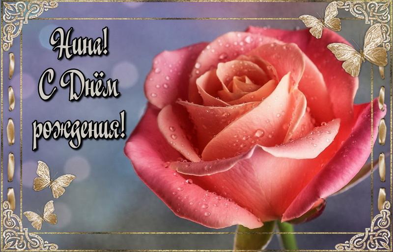 Большая красная роза Нине на День Рождения