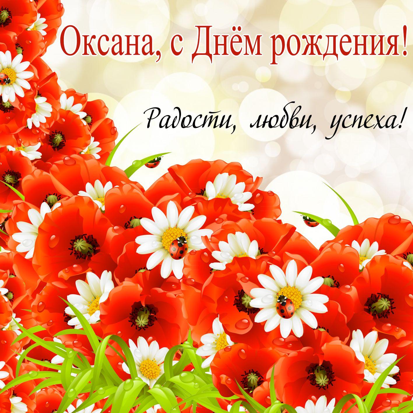 Открытка на День рождения Оксане - полевые цветы с божьими коровками
