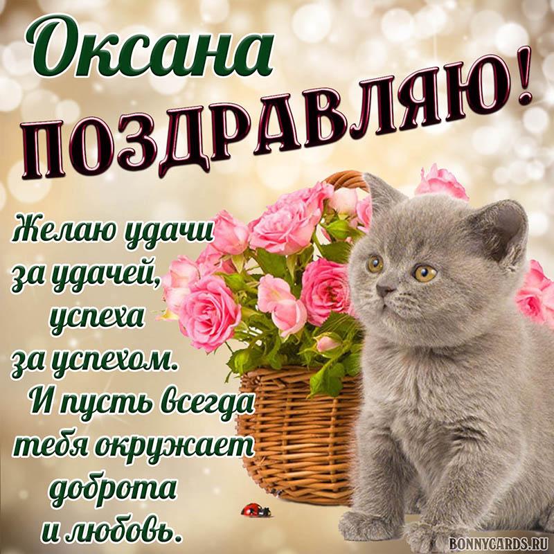 Открытка - доброе поздравление Оксане с котиком и цветами
