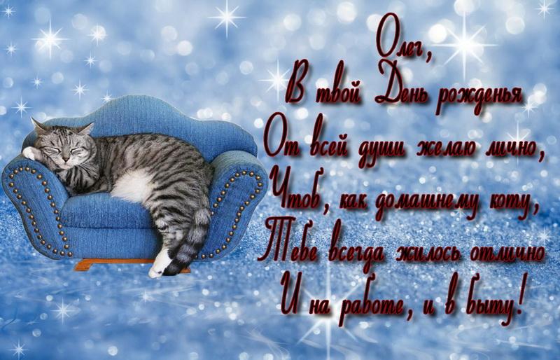 открытка - кот на диване и пожелание для Олега