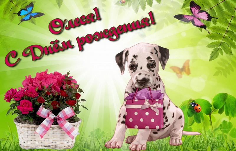 Открытка собачка с подарком и корзина с розами