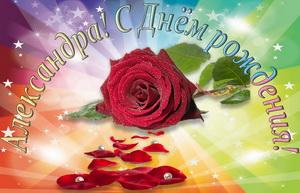 Красная роза на красивом фоне для Александры.