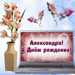 Картинка с ноутбуком и цветами