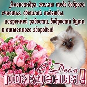 Картинка с котом для Александры на День рождения