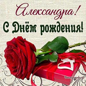 Поздравление Александре с Днём рождения с розой