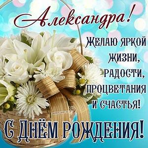 Александра, желаю яркой жизни, радости и процветания