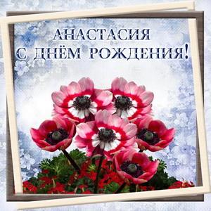 Красивые цветы в рамке для Анастасии