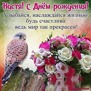 Открытка Насте на День рождения с птичкой и букетом