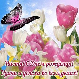Настя, с Днём рождения, удачи и успеха во всех делах