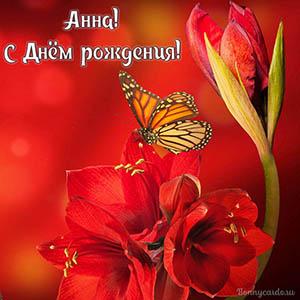 Яркая открытка с цветами и бабочкой на День рождения Анне