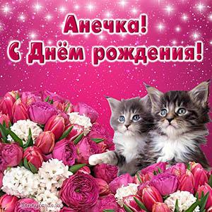 Красивое поздравление с котятами Анечке с Днём рождения