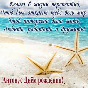 Открытка с морскими звездами и пожеланием
