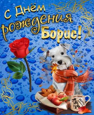 Собачка в шарфике на голубом фоне