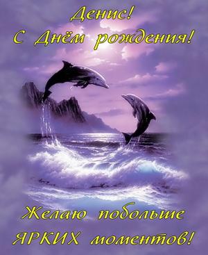Дельфины в море на красивом фоне