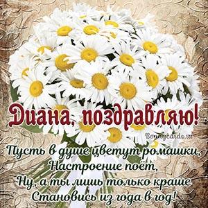 Открытка с ромашками Диане с поздравлением в стихах