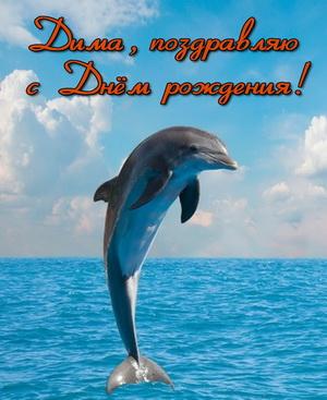 Поздравление Диме на фоне моря с дельфином