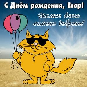 Открытка с забавным котом на День рождения Егору