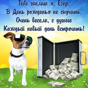 Картинка с забавной собачкой и деньгами для Егора