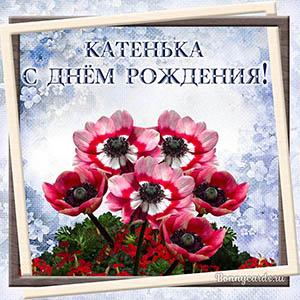 Открытка на День рождения Катеньке с яркими цветочками