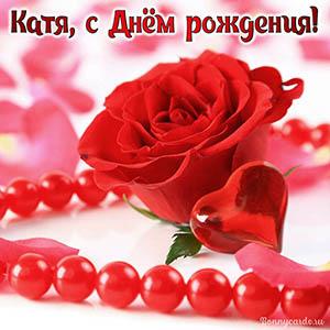 Картинка с красной розой и бусами на День рождения Кате