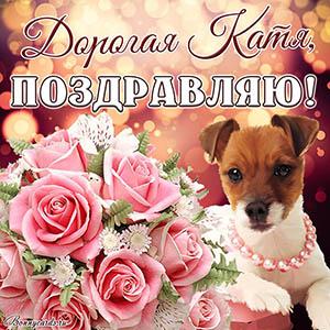 Красивая картинка поздравляю с собачкой и цветами Кате