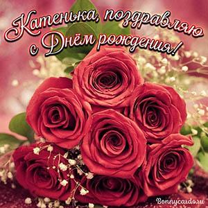 Картинка для Катеньки с поздравлением и яркими розами
