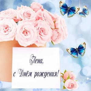 Нежные розы и бабочки на День рождения