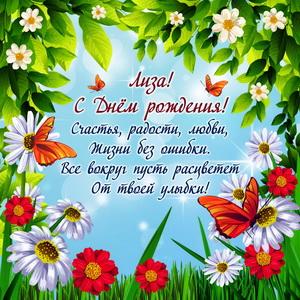 Красивое пожелание Лизе в рамке из цветов