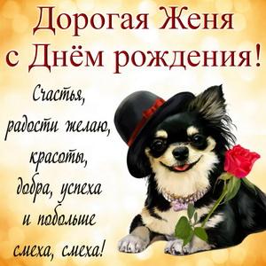 Милая собачка в шляпке и пожелание
