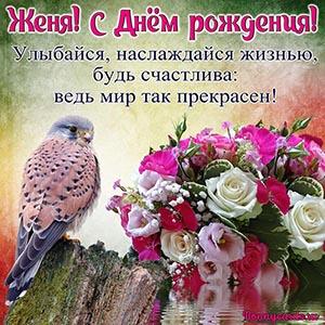 Доброе пожелание с Днём рождения Жене с птичкой