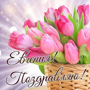 Поздравление для Евгении с тюльпанами в корзинке