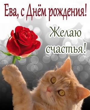 Рыжий котик с красной розой желает счастья