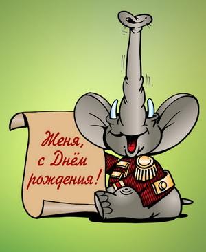 Забавный слоненок Жене на День рождения