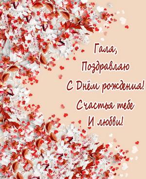 Поздравление для Гали на цветочном фоне