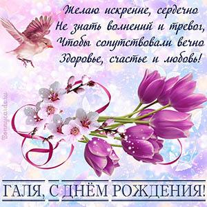Картинка Гале на День рождения с цветами и милой птичкой