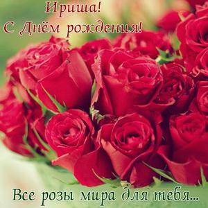 Яркие розы на День рождения Ирише