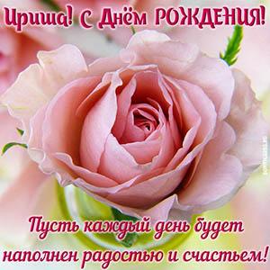 Картинка на День рождения Ирише с цветком и пожеланием