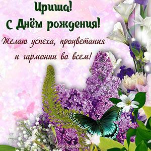 Картинка с бабочкой и цветами на День рождения Ирише
