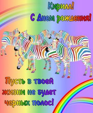 Забавные зебры и красивое пожелание для Кирилла