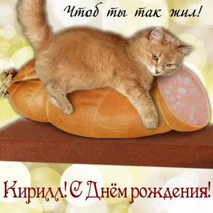 Картинка на День рождения Кириллу с котиком на колбасе