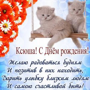 Пушистые котята на качелях и пожелание