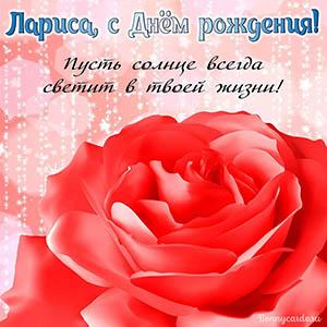 Открытка Ларисе с розой - пусть солнце всегда светит
