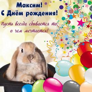 Открытка на День рождения Максиму с забавным кроликом