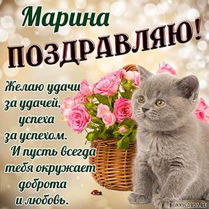 Поздравление для Марины с пожеланием и котиком