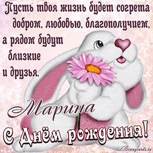 Открытка на День рождения Марине с зайцем и цветком