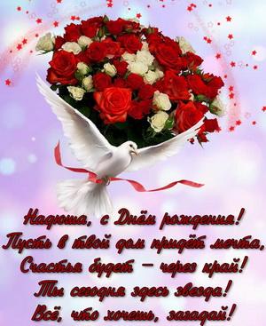 Голубь, букет роз и пожелание для Нади