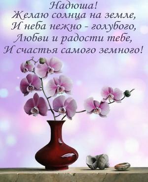 Красивый цветок в вазе и поздравление Надюше